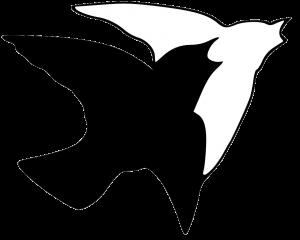 Vogel transparent
